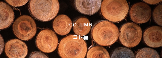 COLUMNコト編
